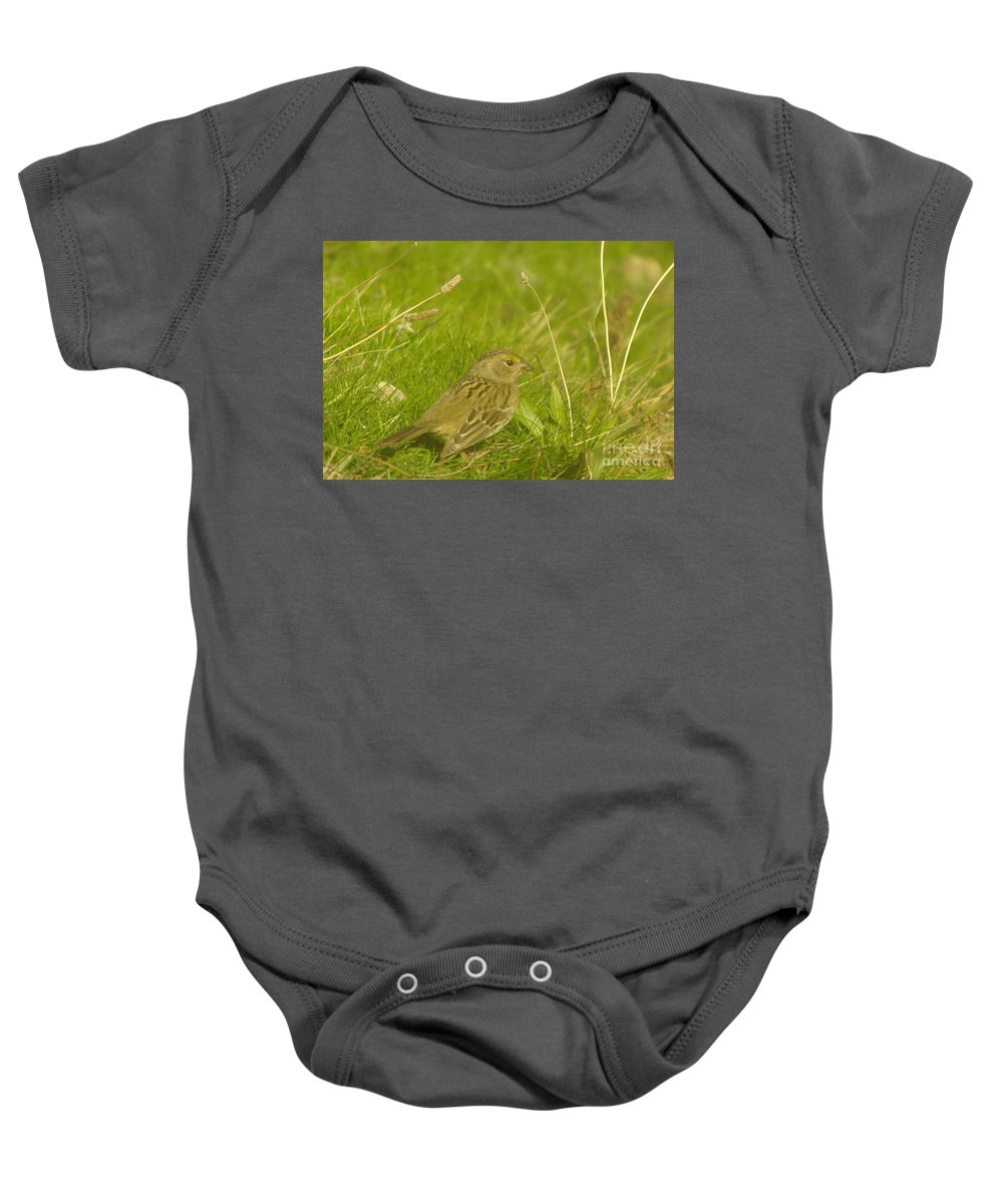 Birds Baby Onesie featuring the photograph Stretching The Wings by Jeff Swan