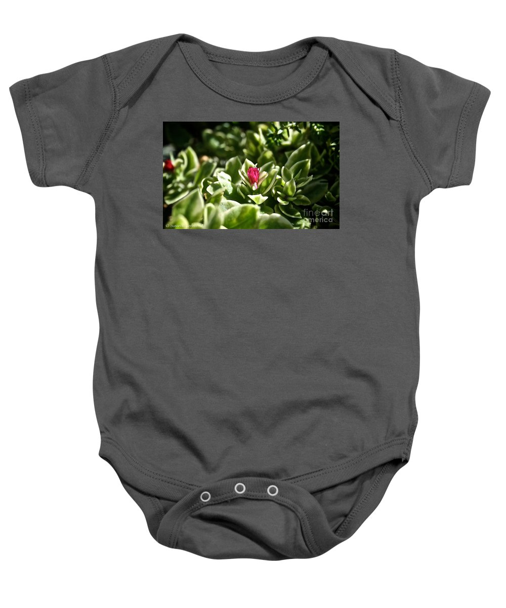 Plant Baby Onesie featuring the photograph Succulent's Ruby by Susan Herber