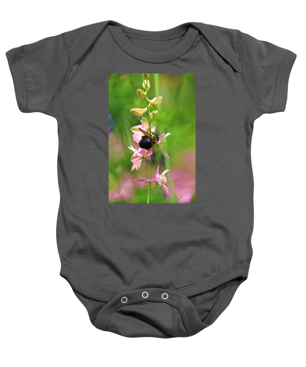 Bumblebee And Pink Delphinium Baby Onesie featuring the photograph Such A Light Touch by Byron Varvarigos