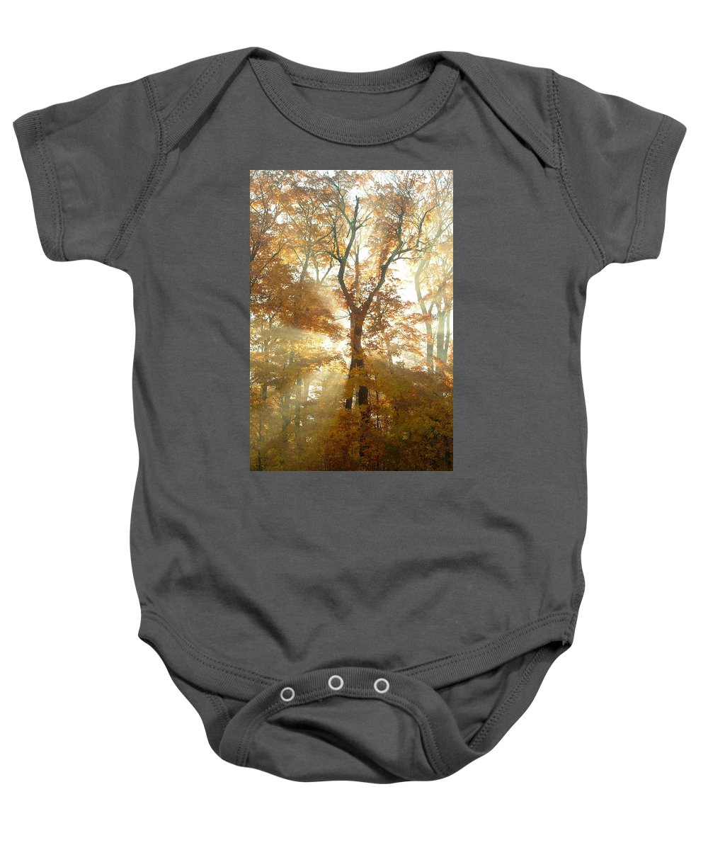 Autumn Colors Baby Onesie featuring the photograph Sun Breaking Through Trees by Design Pics BRO