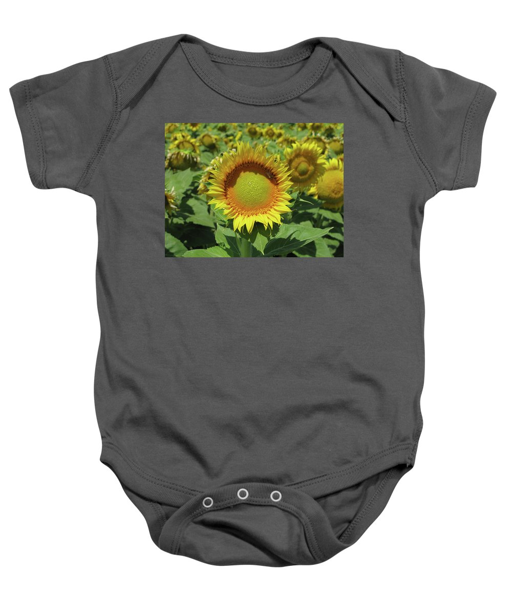 Sunflower Baby Onesie featuring the photograph Sunflower And Honeybee July Two K O Nine by Carl Deaville