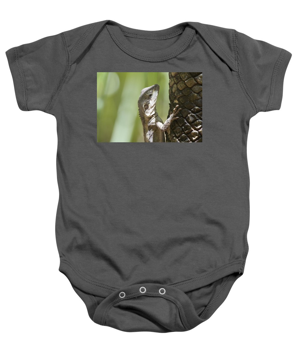 Ta-ta Baby Onesie featuring the photograph Ta-ta Lizard by Douglas Barnard