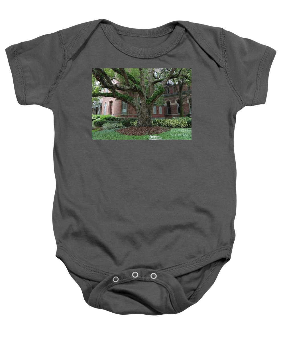 Tampa Baby Onesie featuring the photograph Tampa Tree by Carol Groenen