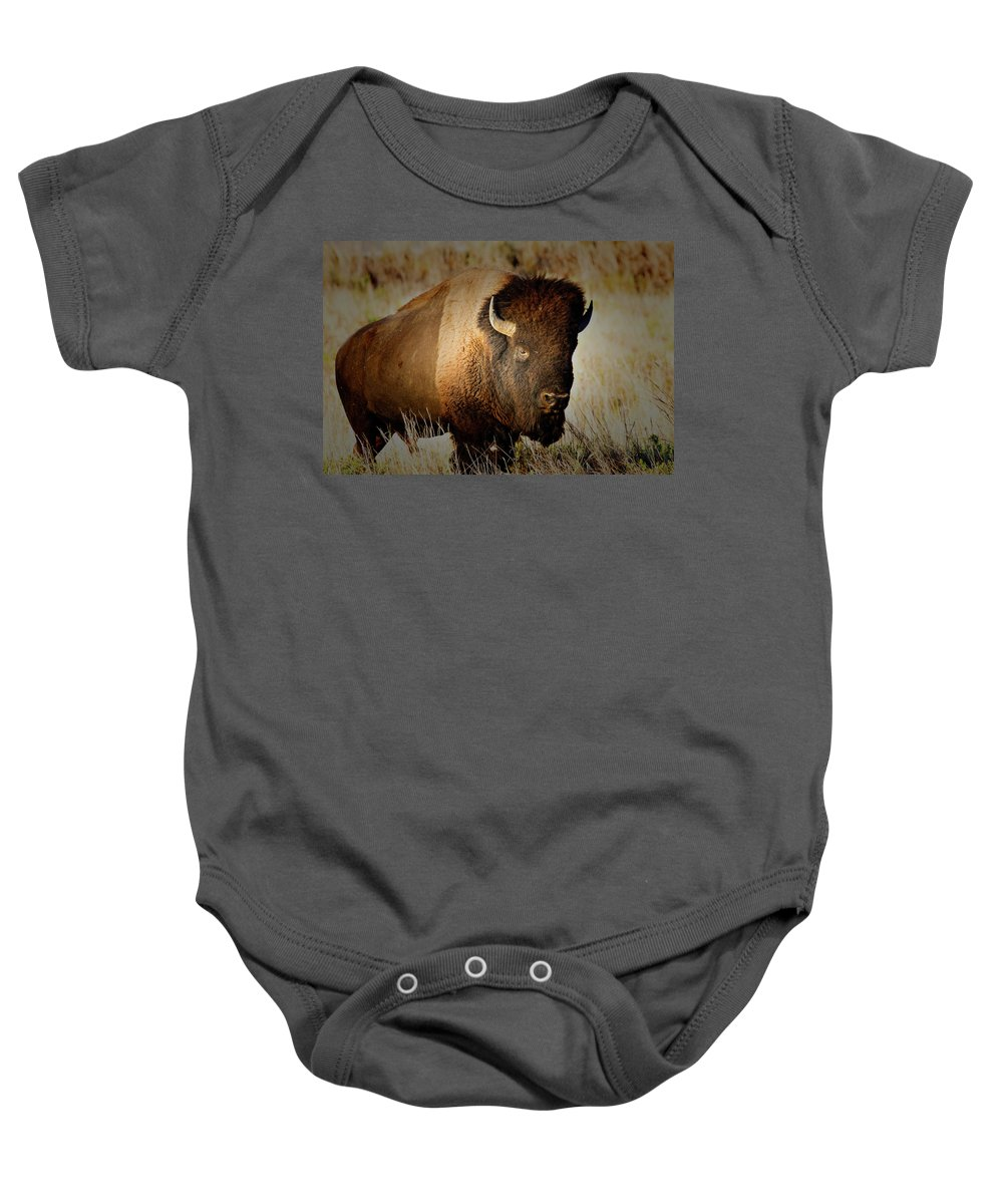 Bull Baby Onesie featuring the photograph Taurus by Douglas Barnard