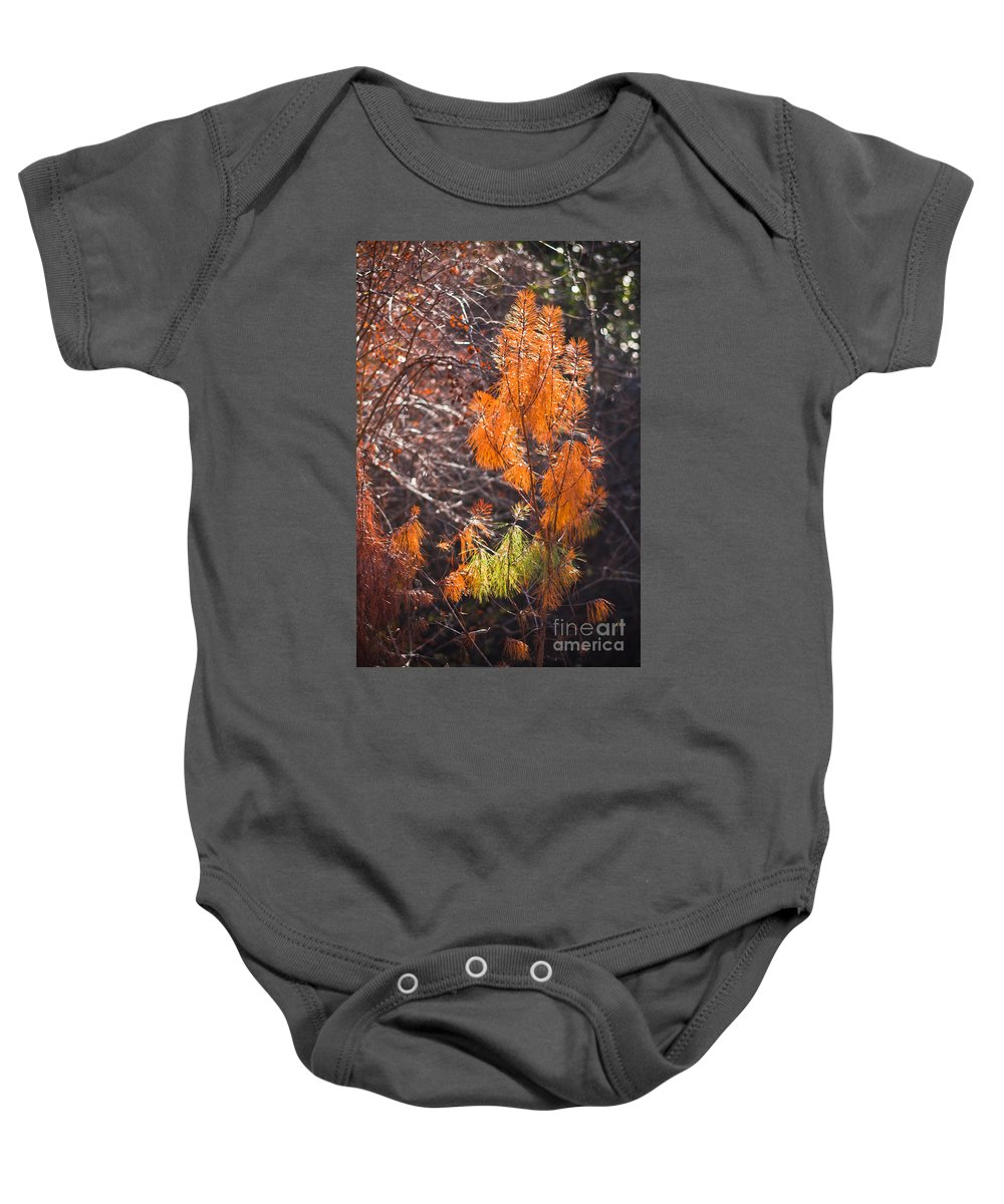 Fall Baby Onesie featuring the photograph Texas Orange by Kim Henderson