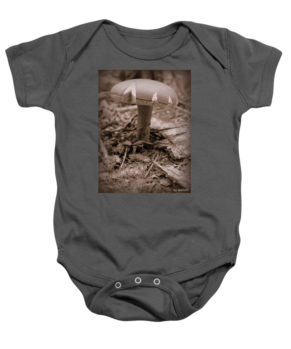 The Ant's Umbrella Baby Onesie featuring the photograph The Ant's Umbrella by Ed Smith