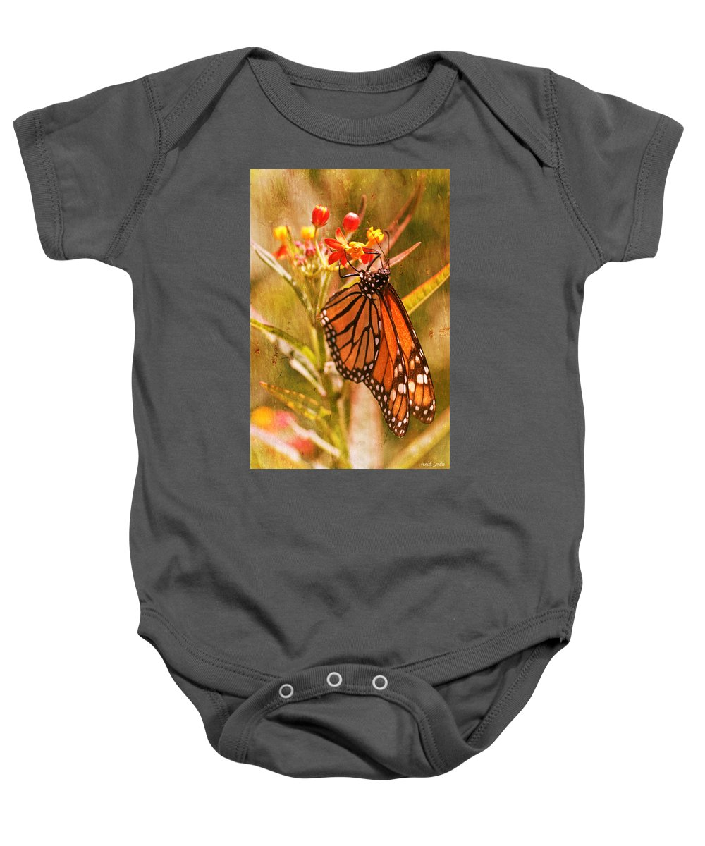 Monarch Baby Onesie featuring the photograph The Beauty Of A Butterfly by Heidi Smith
