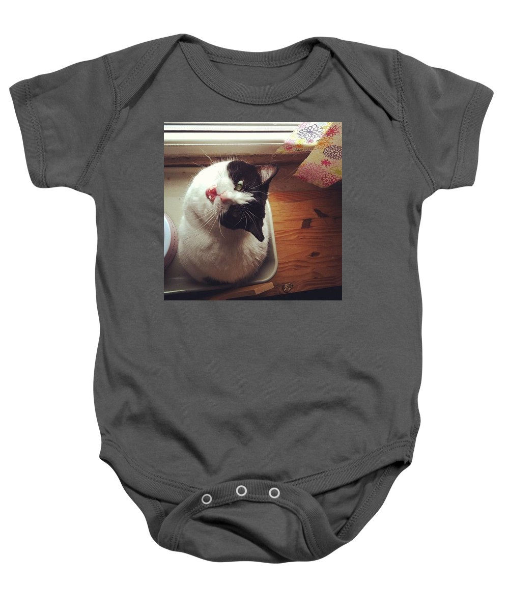 Catsofinstagram Baby Onesie featuring the photograph the Bowl's Empty! #cat by Katie Cupcakes