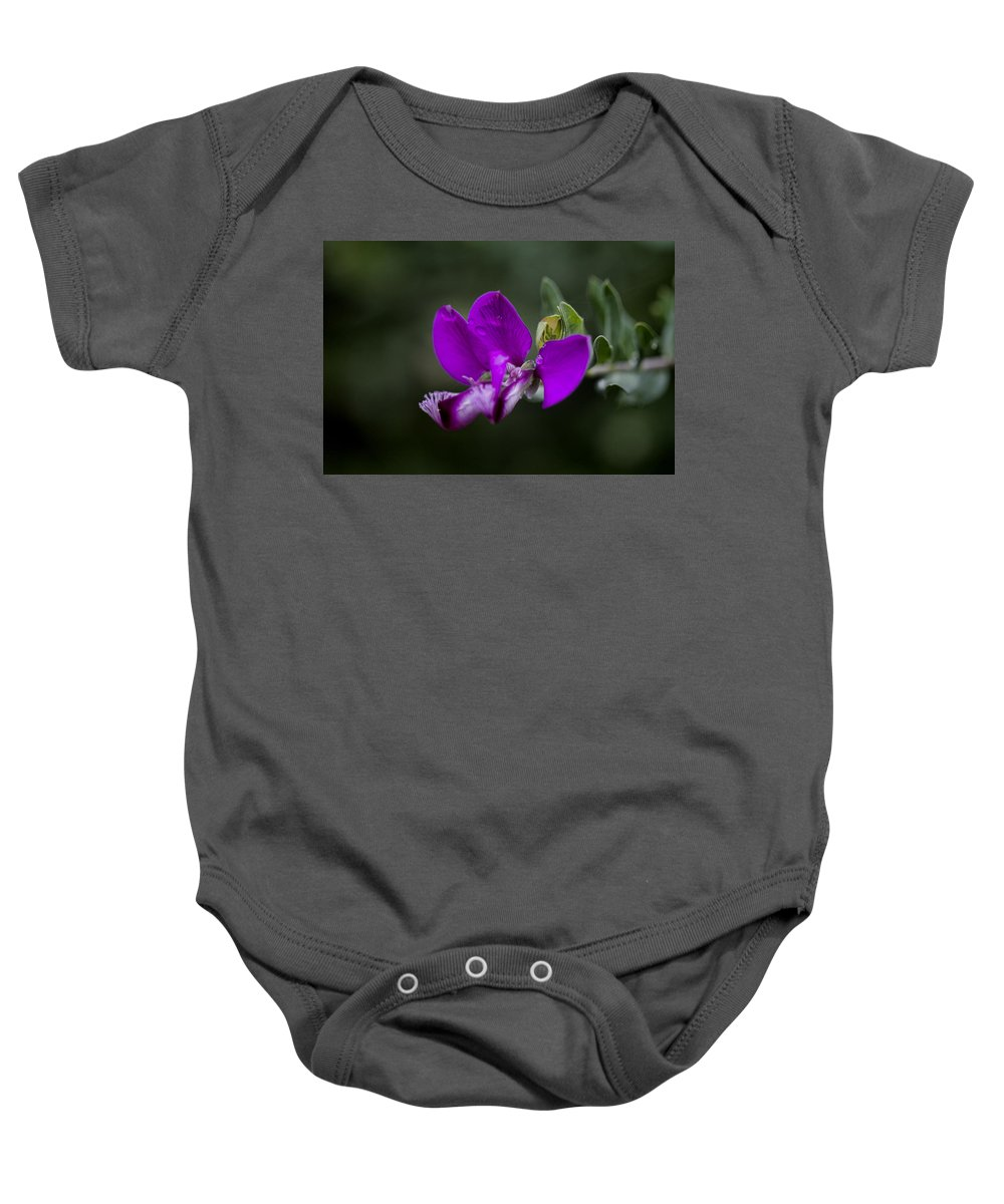 Flower Baby Onesie featuring the photograph The Color Purple V2 by Douglas Barnard