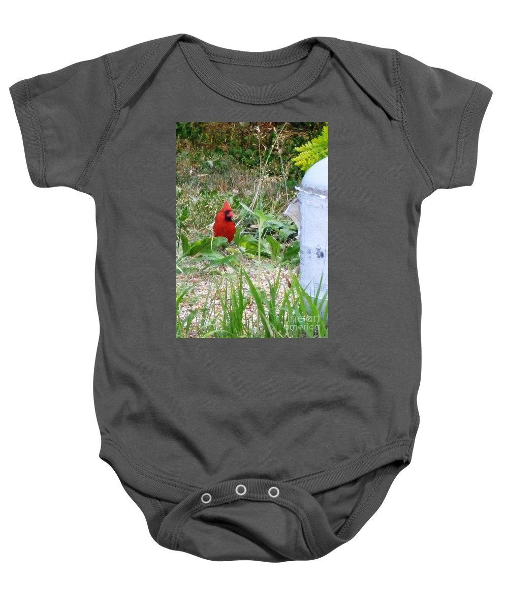 Cardinal Baby Onesie featuring the photograph The Watcher by Alys Caviness-Gober