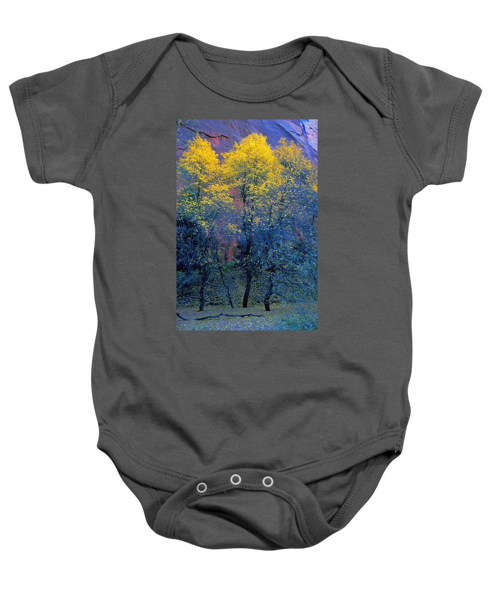 Field Baby Onesie featuring the photograph Three Thin Autumnal Trees In Front Of by Don Hammond