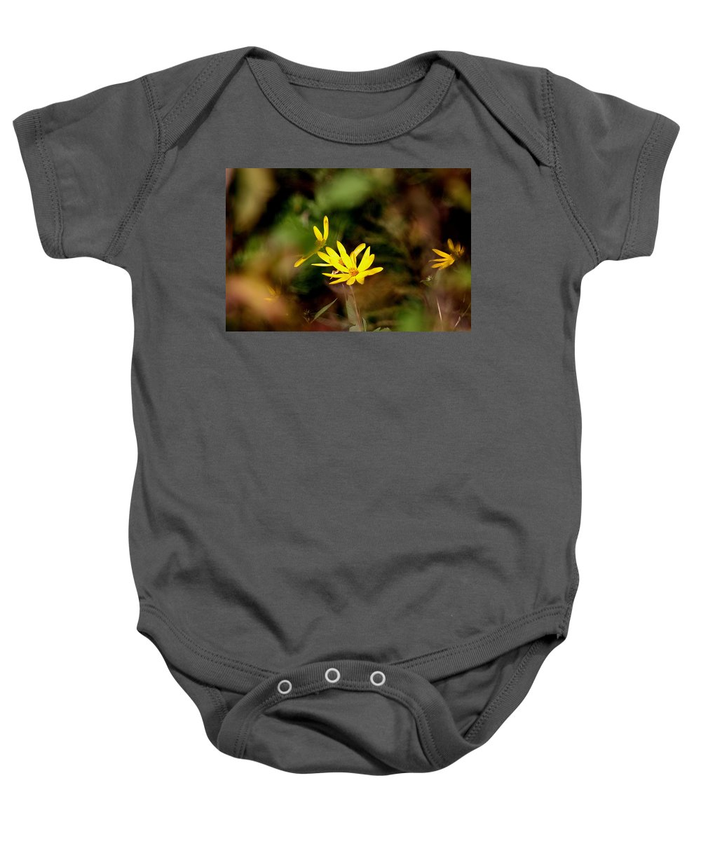 Baby Onesie featuring the photograph Through An Opening by Travis Truelove