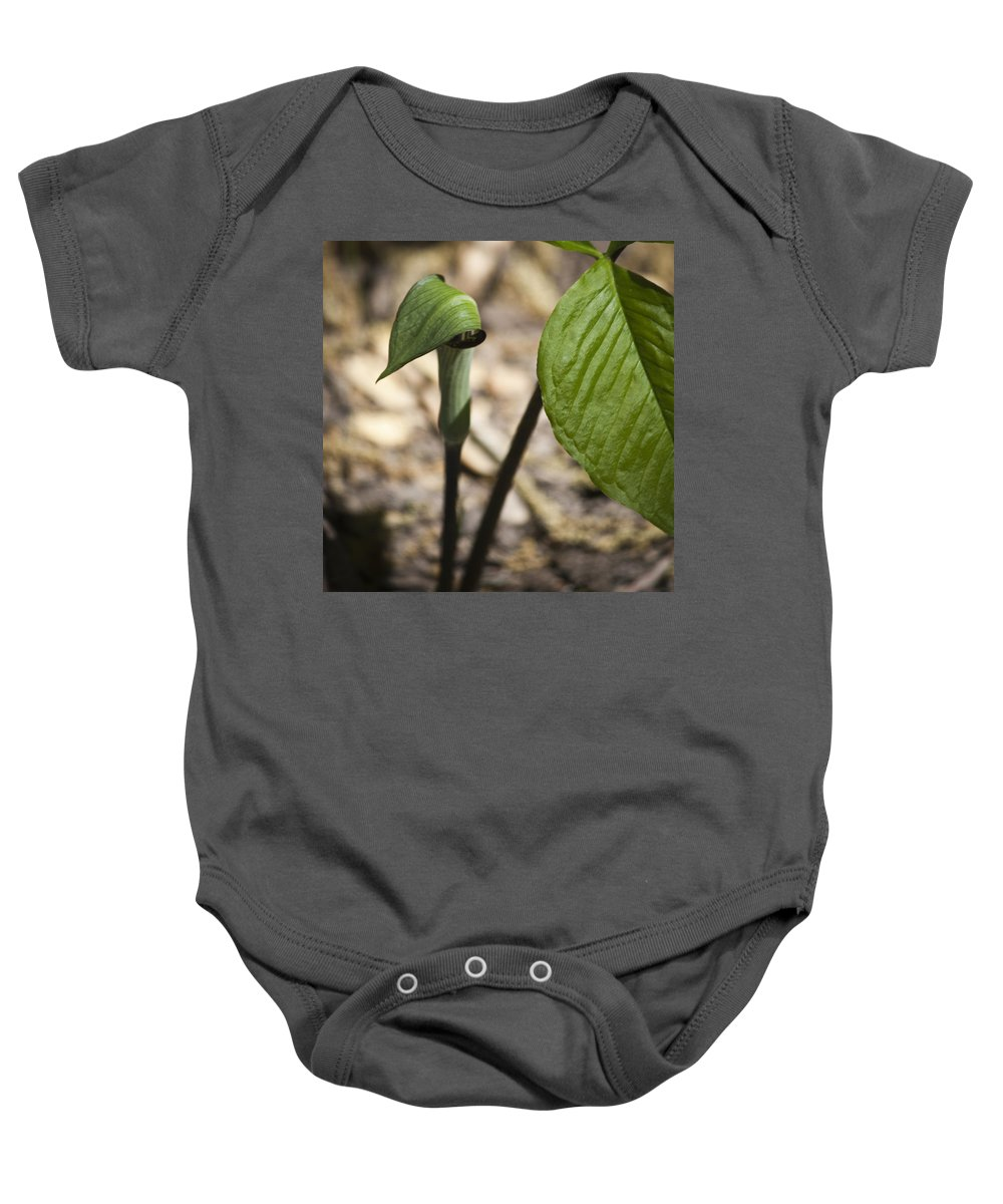 Arisaema Triphyllum Baby Onesie featuring the photograph Tiny Jack In The Pulpit by Teresa Mucha