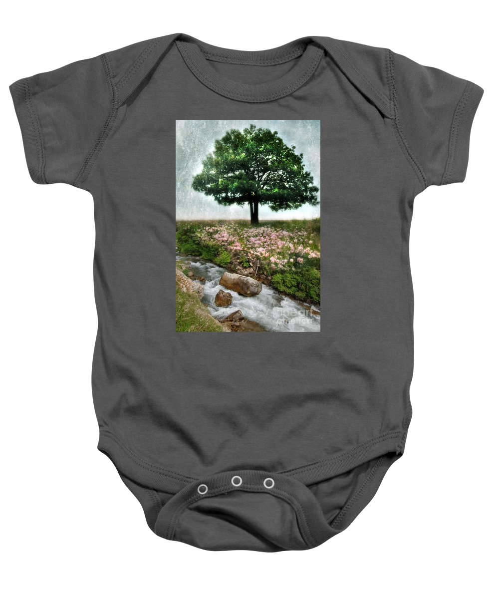 Water Baby Onesie featuring the photograph Tree By Stream by Jill Battaglia