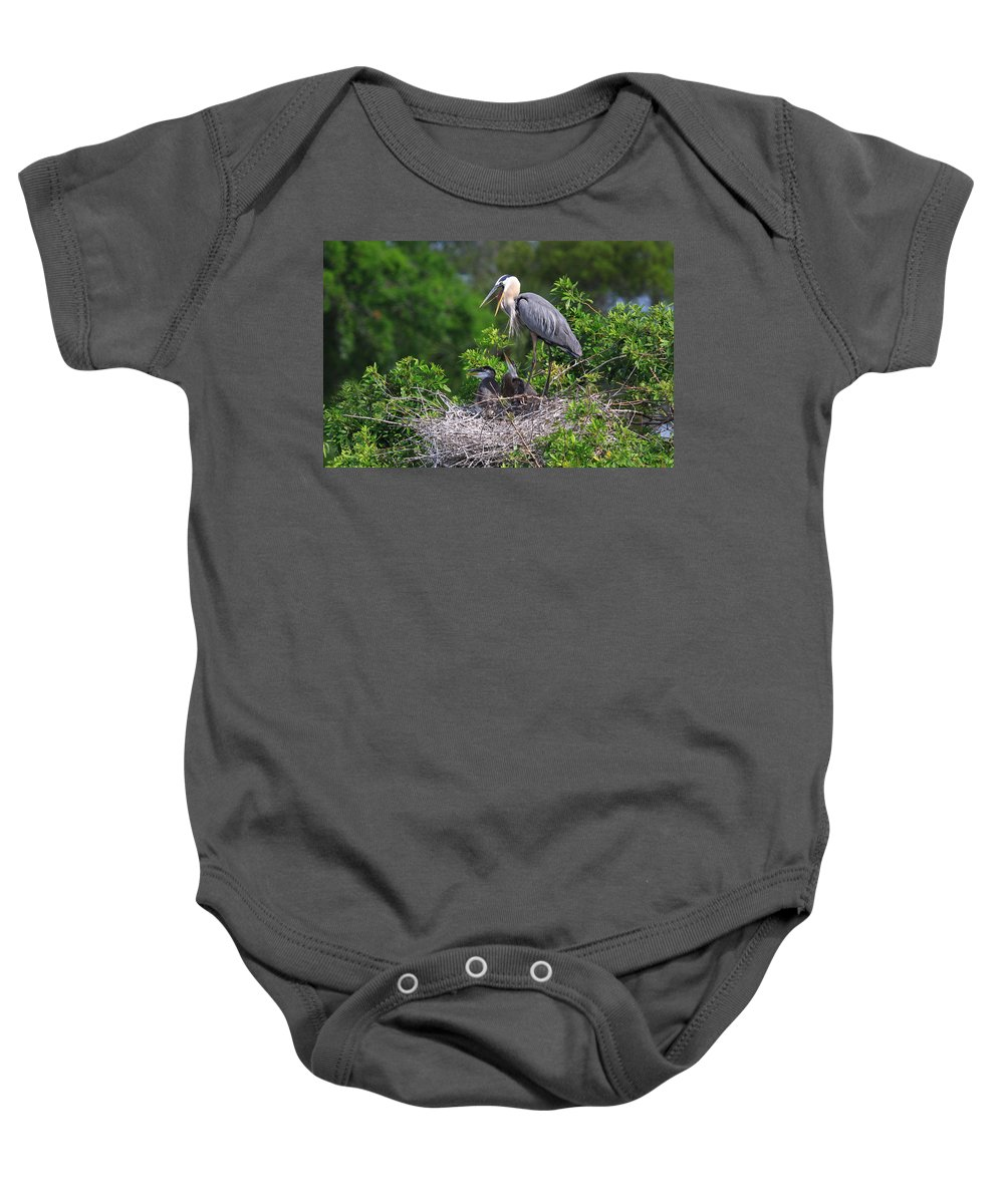 Birds Baby Onesie featuring the photograph Under Mother's Shadow by Shari Jardina