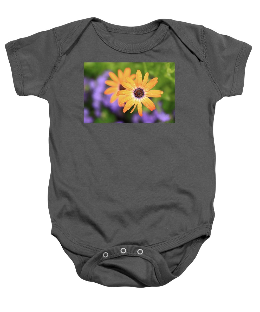 Flowers Baby Onesie featuring the photograph Untitled by Rick Berk