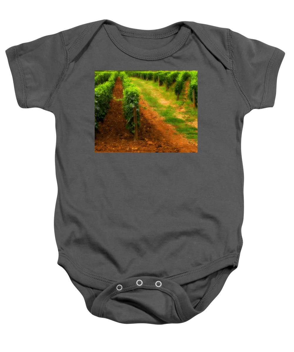 Vineyard Baby Onesie featuring the photograph Vineyard In Burgundy France by Greg Matchick