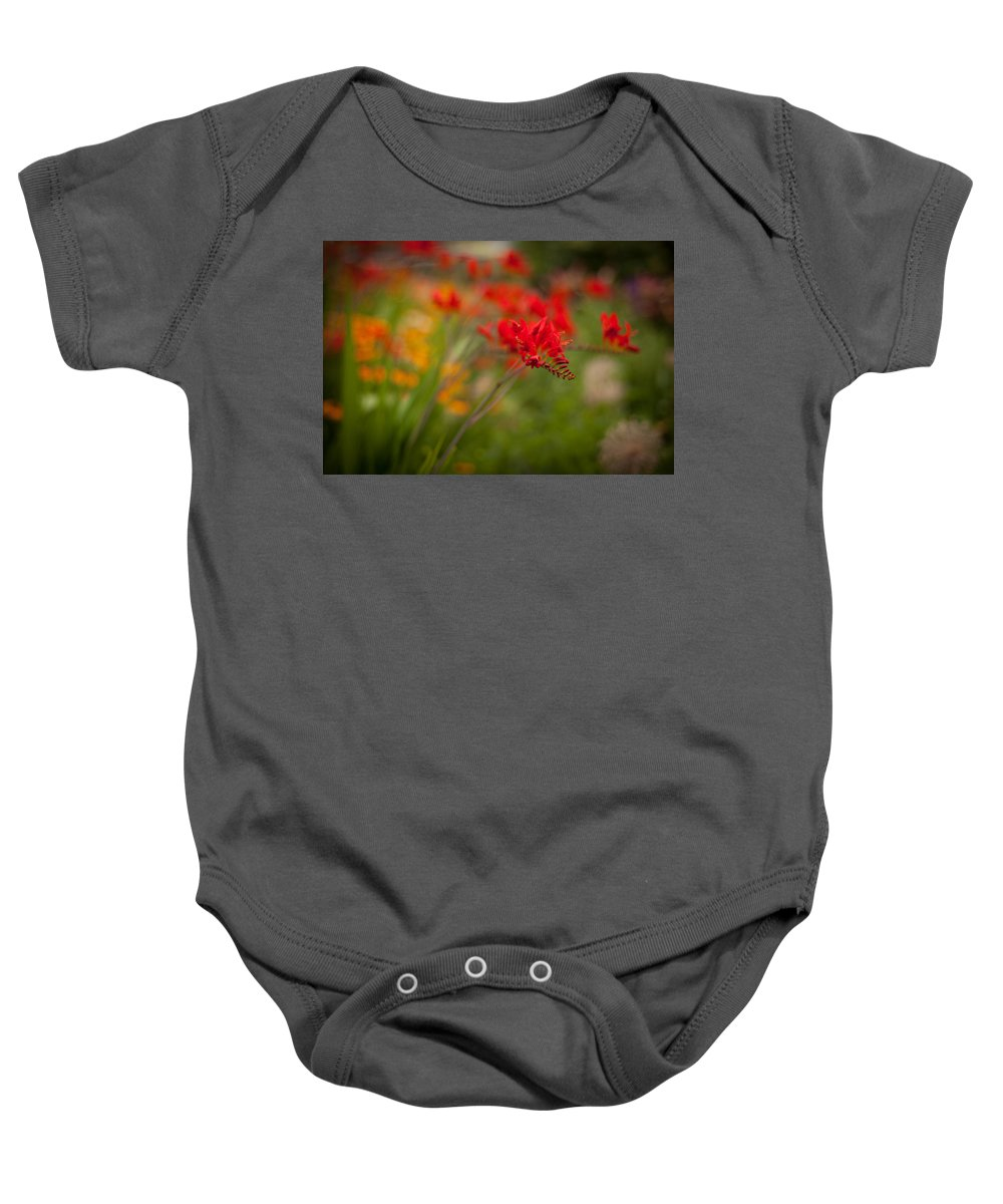 Flower Baby Onesie featuring the photograph Vivid Points by Mike Reid