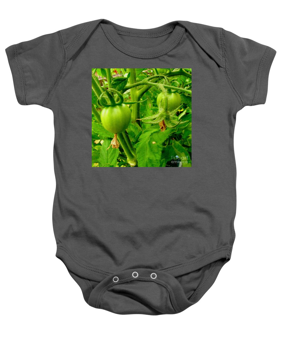 Gardening Baby Onesie featuring the photograph Waiting For The Harvest by Rory Sagner