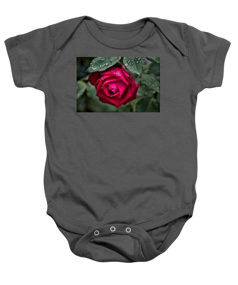 Rose Baby Onesie featuring the photograph Wet Weather Rose by Douglas Barnard