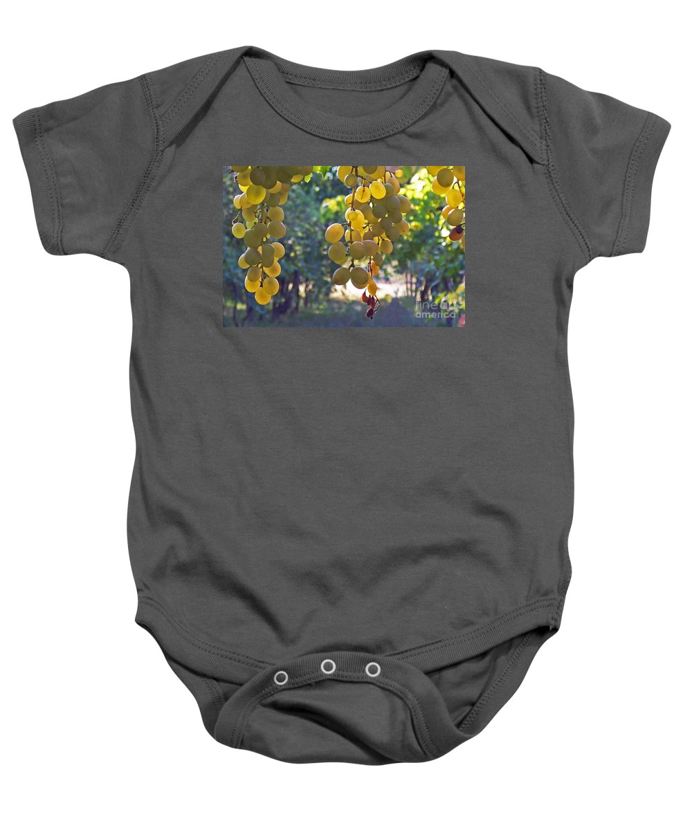 Grapes Baby Onesie featuring the photograph White Grapes by Barbara McMahon