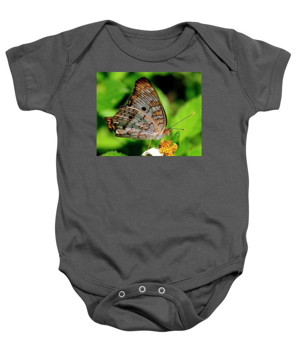 White Peacock Butterfly Baby Onesie featuring the photograph White Peacock Butterfly by Bill Dodsworth