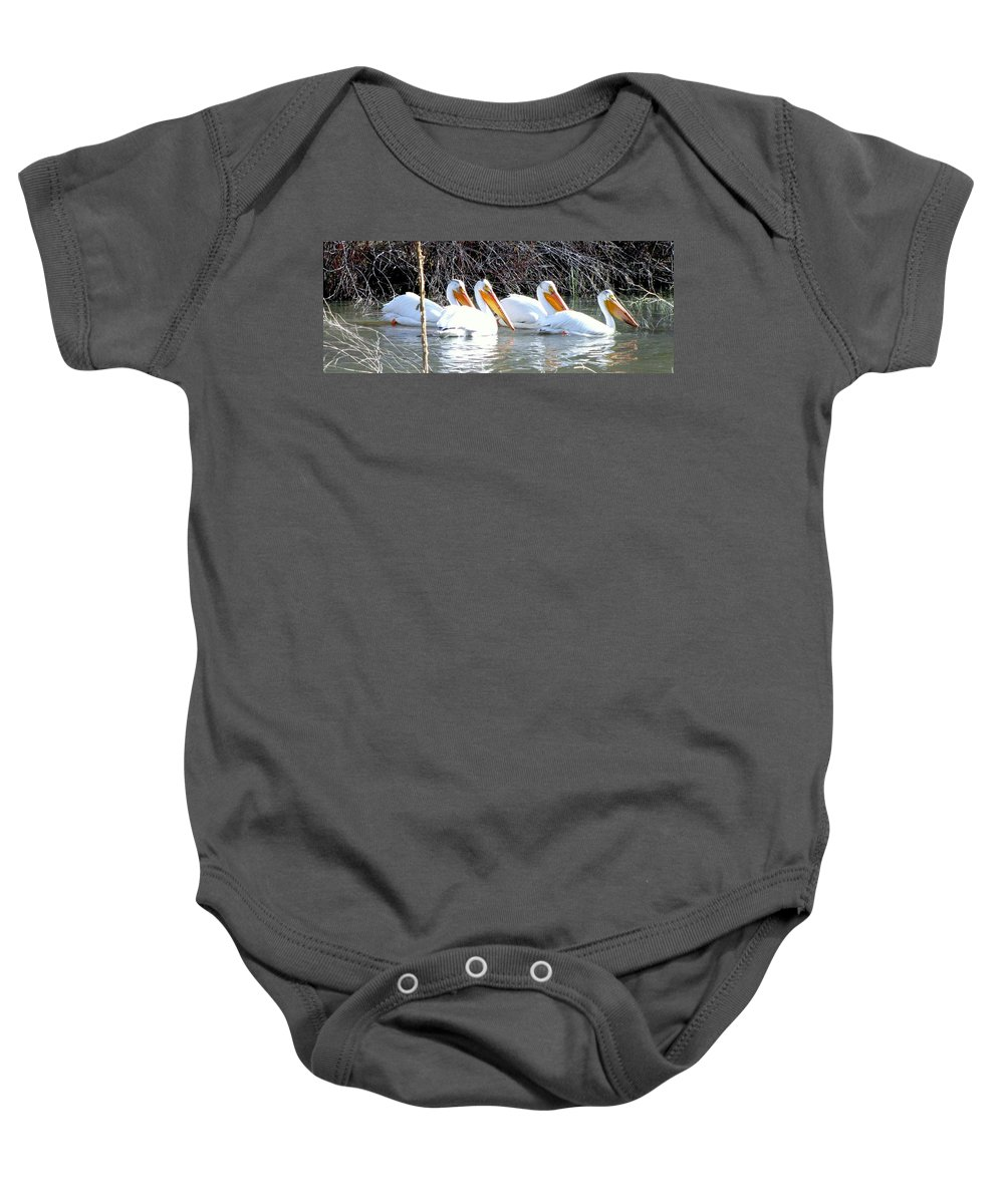 White Pelicans Baby Onesie featuring the photograph White Pelicans by Judy Garrett