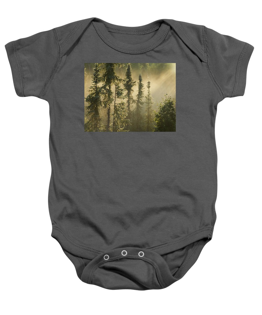 Color Images Baby Onesie featuring the photograph White Spruce In Mist At Sunrise by Philippe Henry