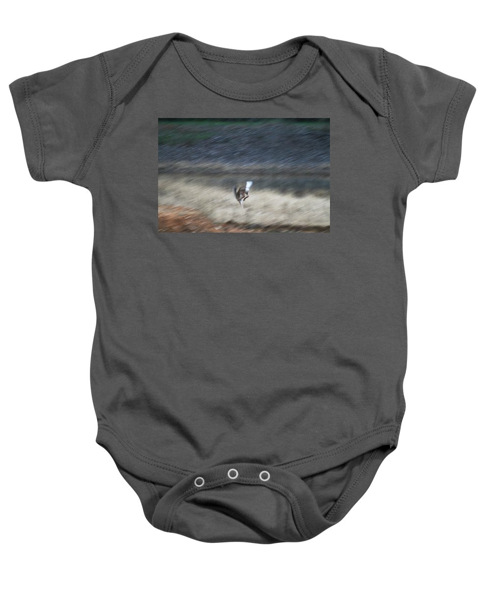 Whitetail Baby Onesie featuring the photograph Whitetail Abstract by Kathy Clark