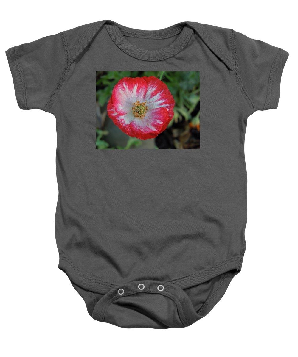Flowers Baby Onesie featuring the photograph Winter Poppy by Diana Hatcher
