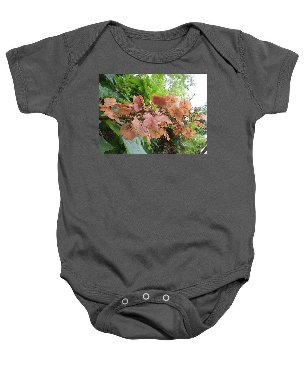 Hydrangea Baby Onesie featuring the photograph Wooden Hydrangea by Sonali Gangane