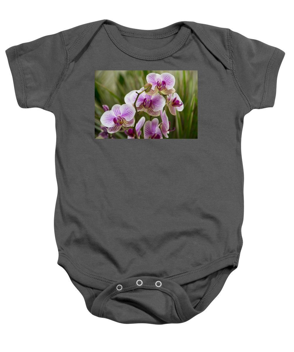 Exotic Baby Onesie featuring the photograph Zen Garden by Angelina Vick
