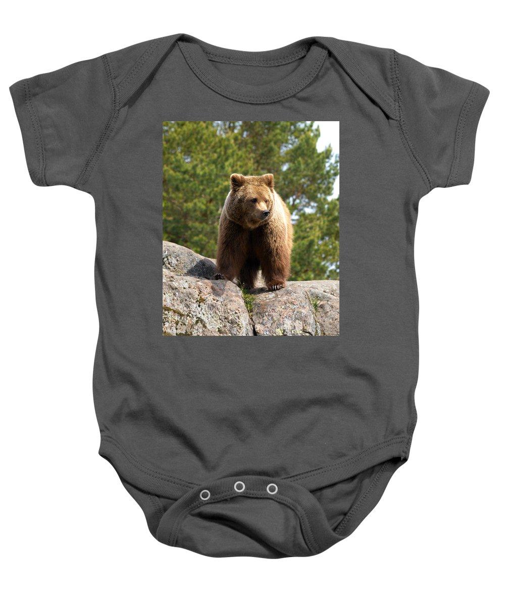 Lehtokukka Baby Onesie featuring the photograph Brown Bear 4 by Jouko Lehto