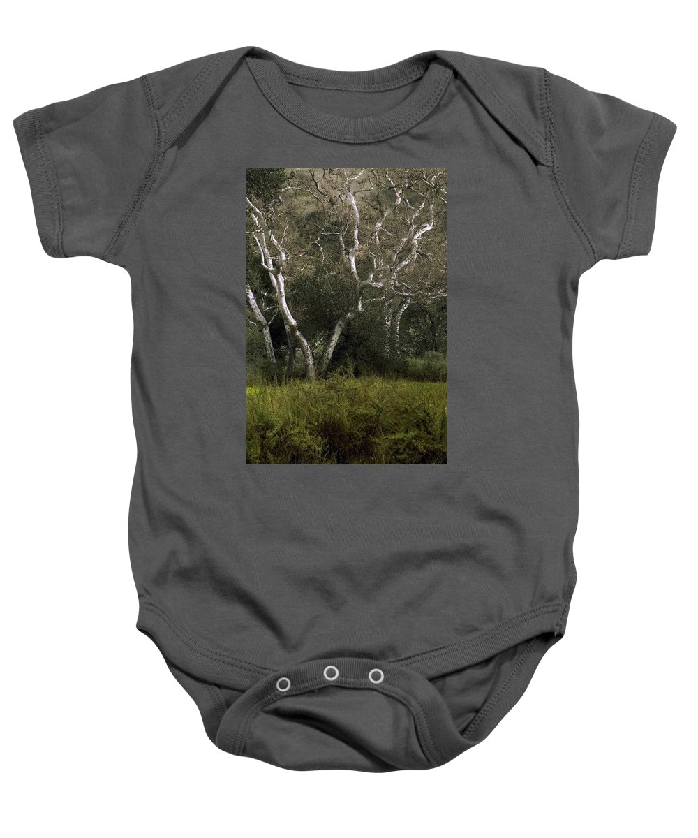 Tree Baby Onesie featuring the photograph Dv Creek Trees by Karen W Meyer