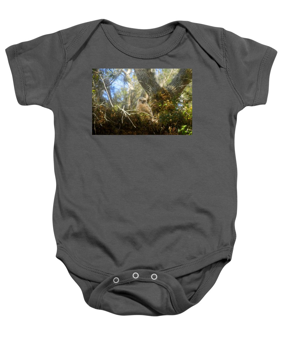 Great Horned Owl Baby Onesie featuring the photograph Babe In The Woods by David Lee Thompson