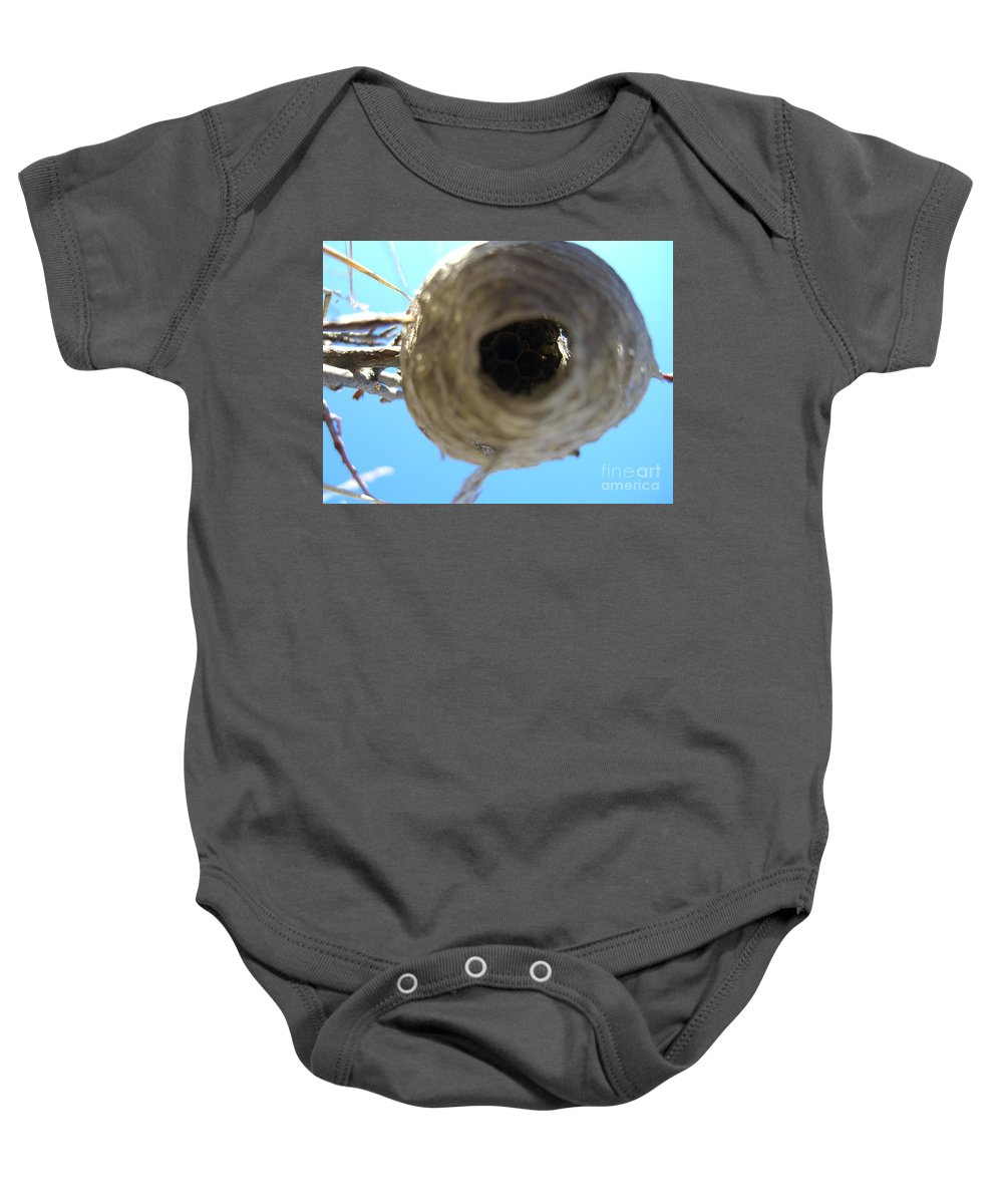 Photograph Bee Hive Blue Sky Branch Insect Baby Onesie featuring the photograph Bee Hive by Seon-Jeong Kim