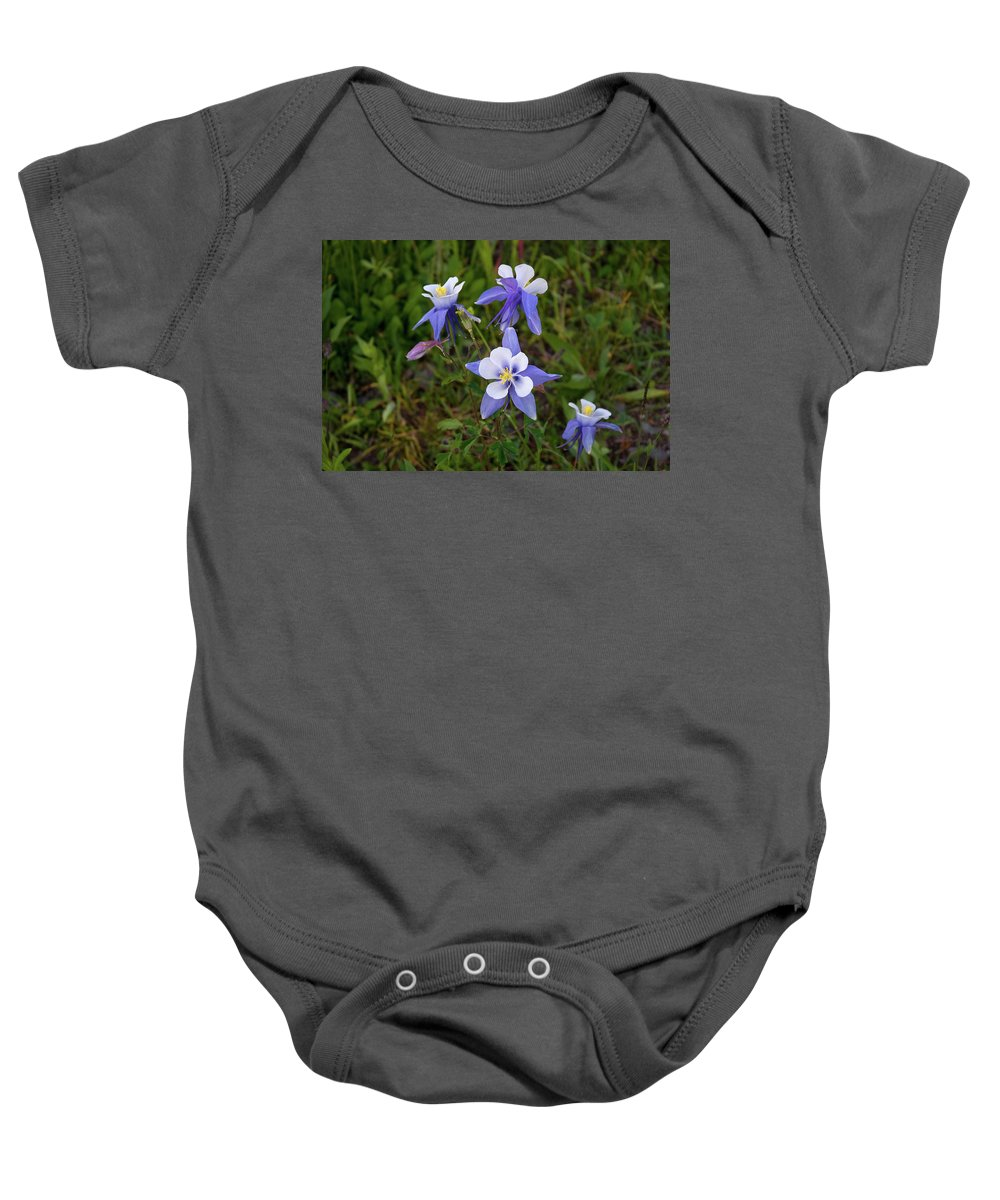 Colorado Baby Onesie featuring the photograph Colorado Columbine by Steve Stuller