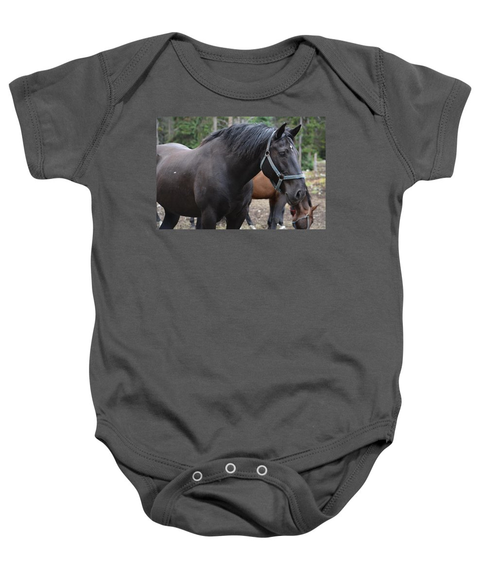 Horse Baby Onesie featuring the photograph Cooke City Horses by Sonja Bratz