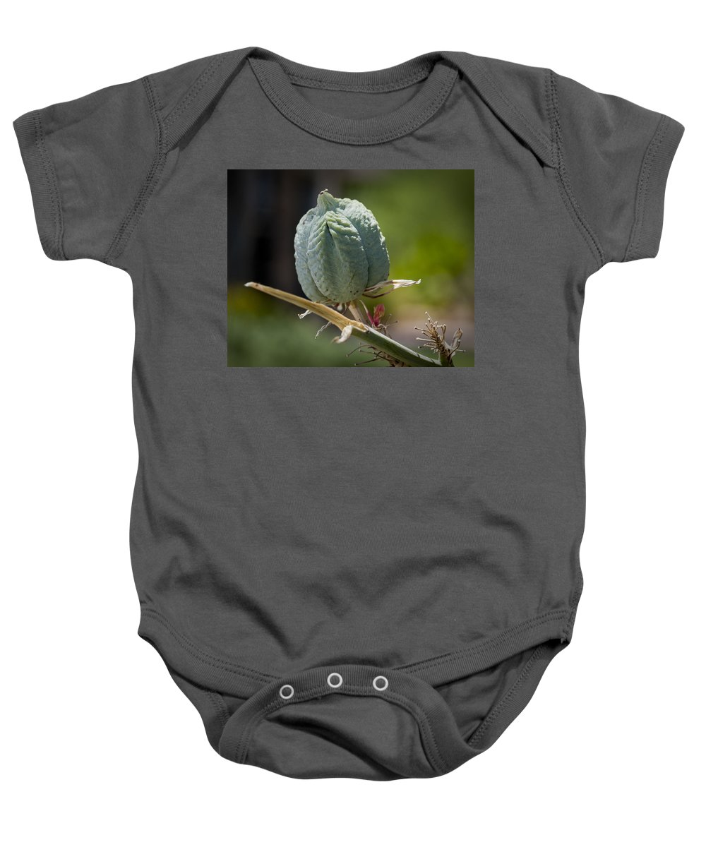 Seed Pods Baby Onesie featuring the photograph Desert Seed Pod 1 by Kelley King