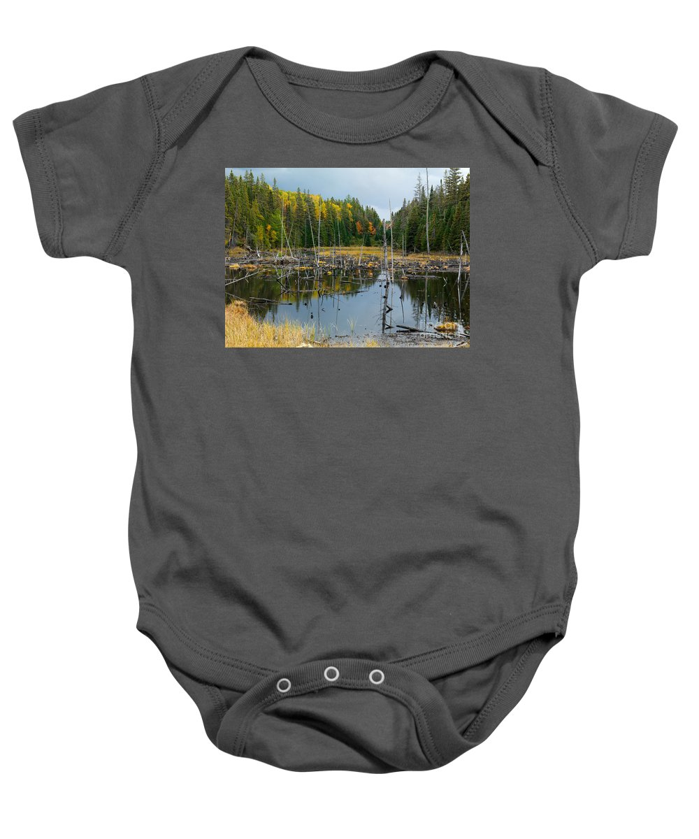 Drowned Trees Baby Onesie featuring the photograph Drowned Trees by Oleksiy Maksymenko