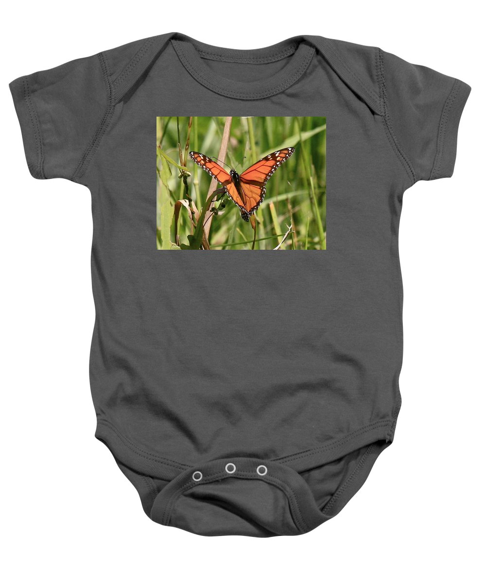 Butterfly Baby Onesie featuring the photograph Drying My Wings by Robert Pearson