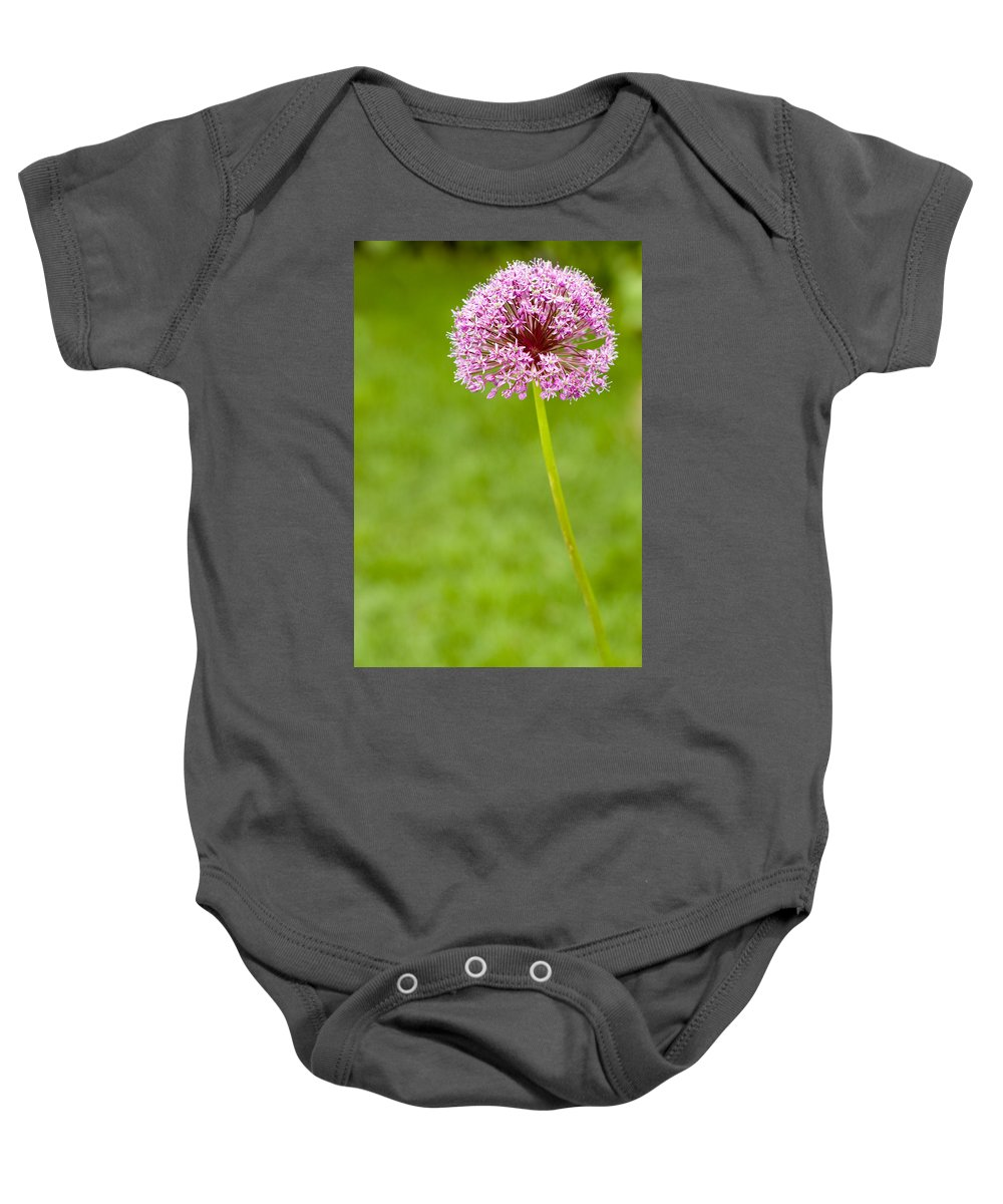 Flower Baby Onesie featuring the photograph Flower by Sebastian Musial