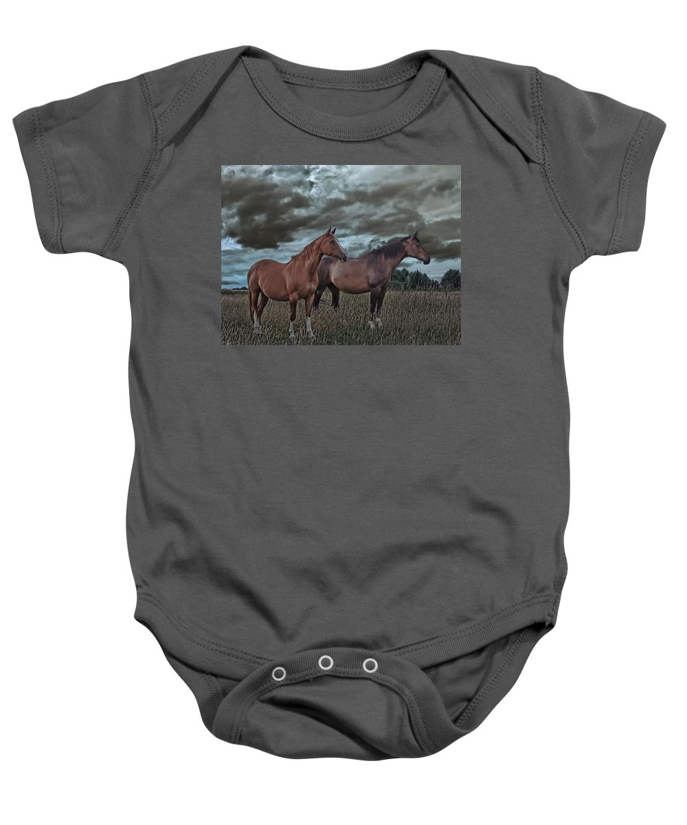 Animal Baby Onesie featuring the photograph Hanoverians by Joachim G Pinkawa