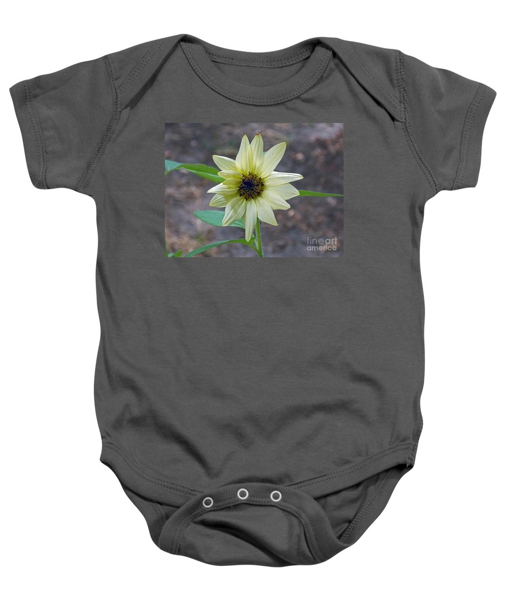 Pictures Of Flowers Baby Onesie featuring the photograph Hitchhiker by Skip Willits
