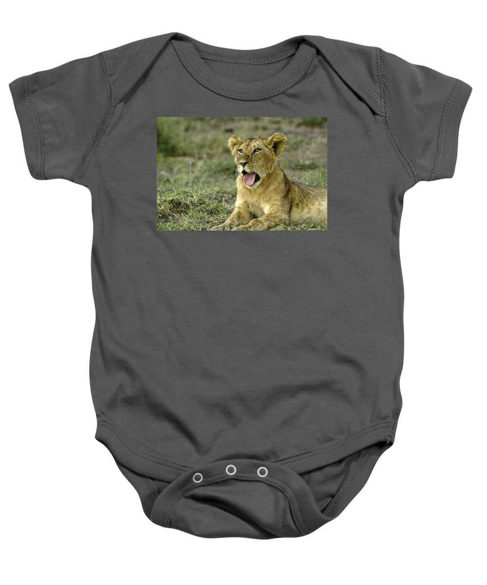 Africa Baby Onesie featuring the photograph It's Been A Long Day by Michele Burgess