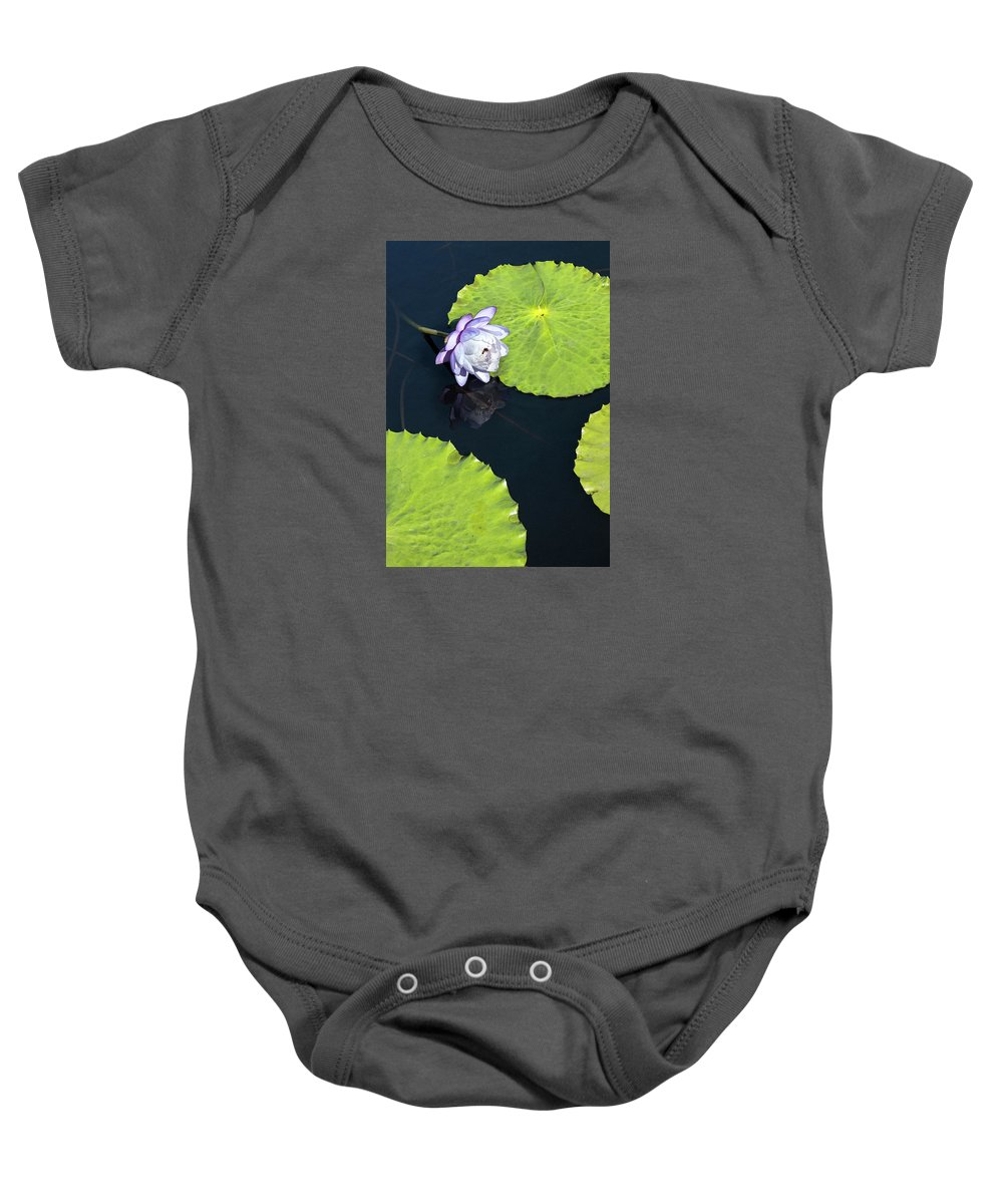 Photograph Baby Onesie featuring the photograph Lily Love by Suzanne Gaff
