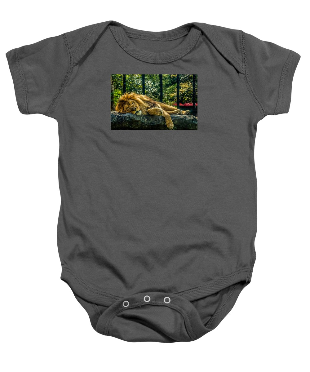Baby Onesie featuring the photograph Lion Relaxing by Ajit Vikram