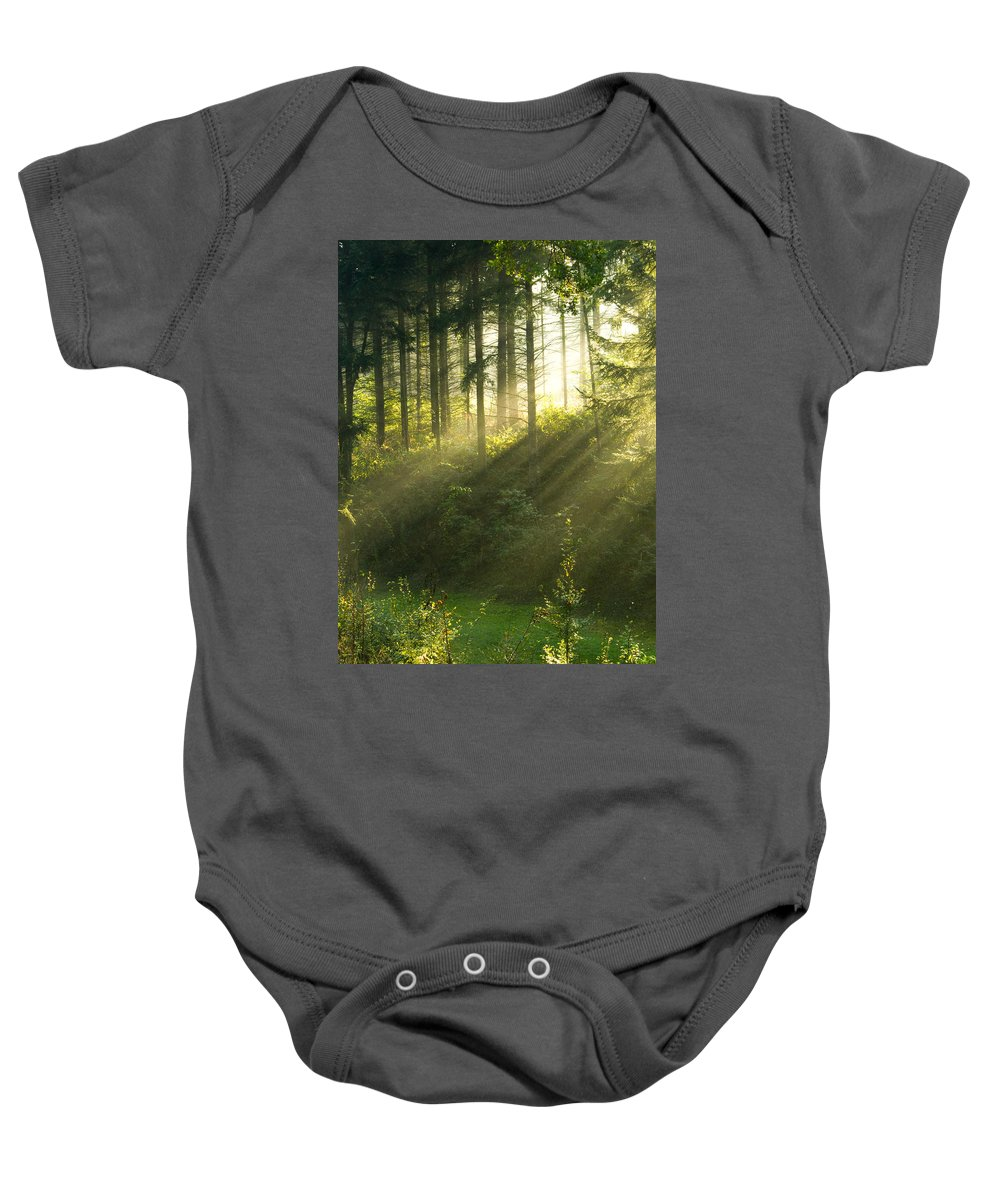 Light Baby Onesie featuring the photograph Morning Light Iv by Daniel Csoka