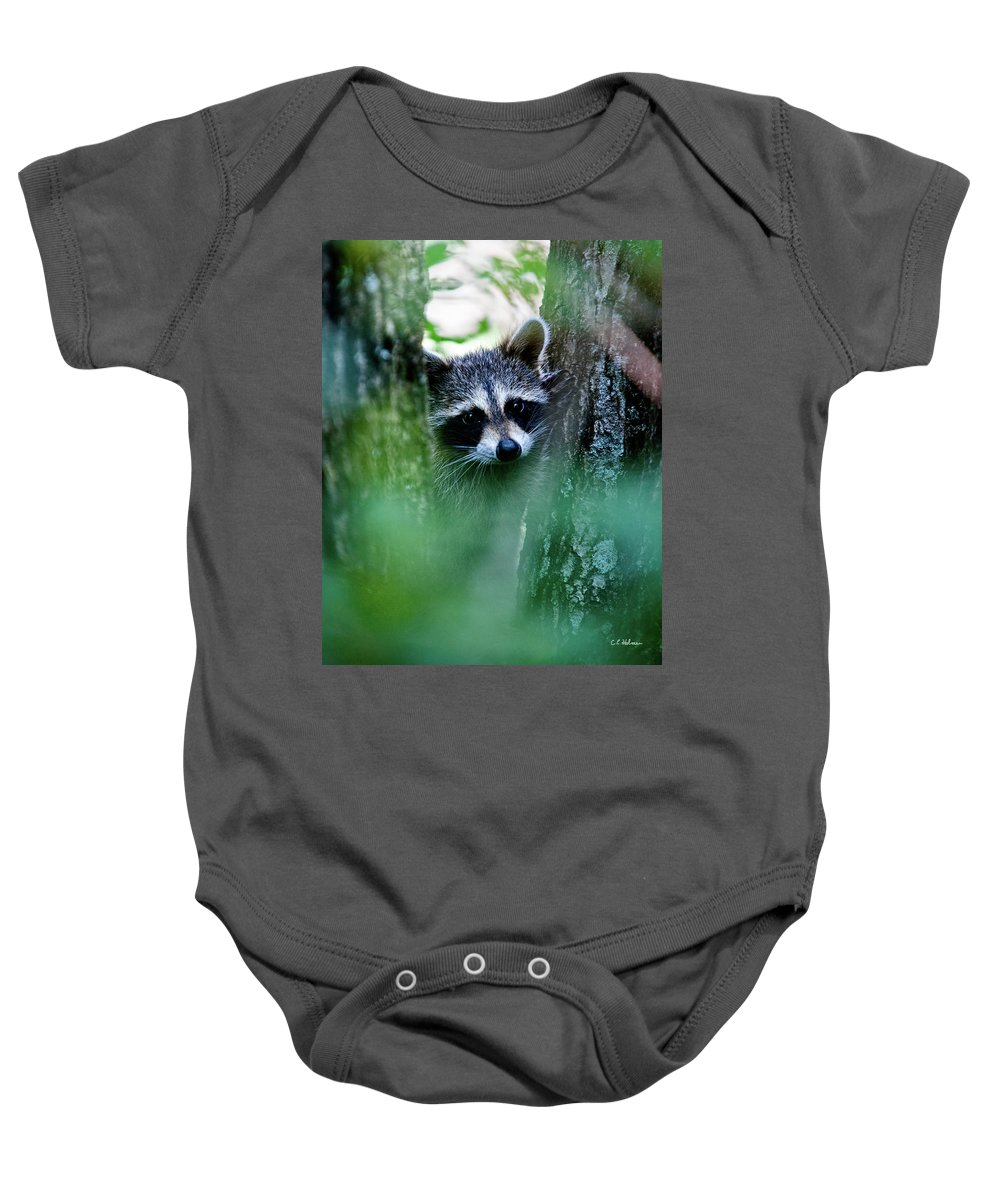 Racoon Baby Onesie featuring the photograph On Watch by Christopher Holmes