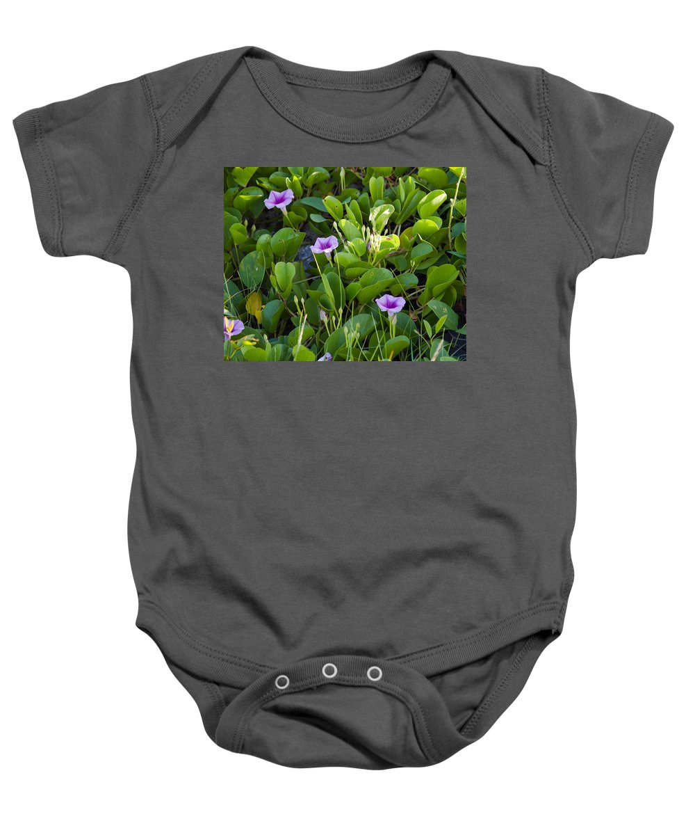 Railroad; Vine; Morning; Glory; Ipomoea; Pes-caprae; Pes; Caprae; Flower; Florida; Shore; Beach; Bea Baby Onesie featuring the photograph Railroad Vine by Allan Hughes